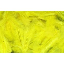 Yellow Feathers Pack 25gm (approx 200) - KW118006